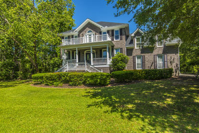 Johns Island Single Family Home For Sale: 3995 Gift Boulevard