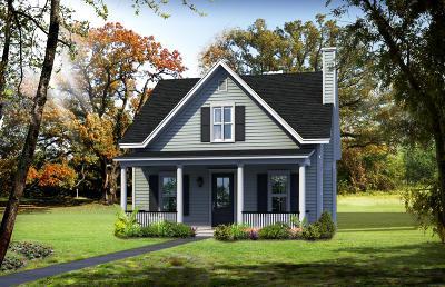 Johns Island Single Family Home For Sale: 1715 Jessy Elizabeth Road