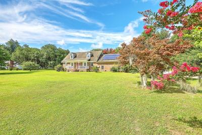 Mount Pleasant Single Family Home For Sale: 1275 Porchers Bluff Road