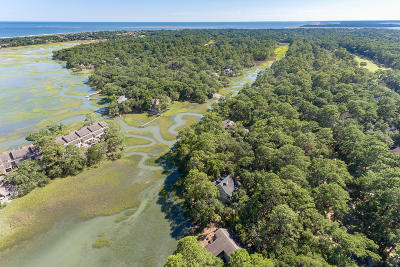 Charleston County Residential Lots & Land For Sale: 3062 Seabrook Island Rd