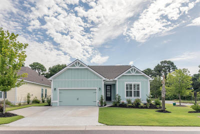 Mount Pleasant Single Family Home Contingent: 1376 Longspur Drive