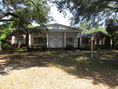Walterboro Single Family Home For Sale: 504 Thompson Street