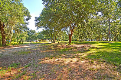 Wadmalaw Island Residential Lots & Land For Sale: Tract F Cherry Point Road
