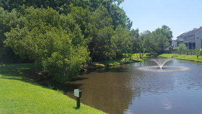 Charleston Residential Lots & Land Contingent: Lot 73 Stonecreek Drive