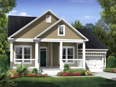 Mount Pleasant SC Single Family Home For Sale: $447,200