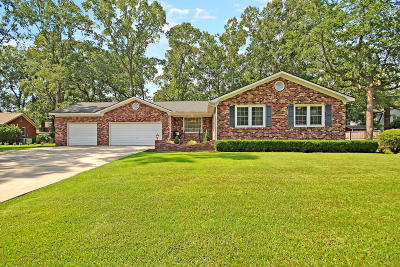Summerville Single Family Home For Sale: 102 Greendale Court