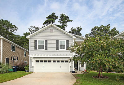 Ladson Single Family Home For Sale: 146 Instructor Court