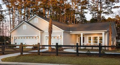 Mount Pleasant SC Single Family Home For Sale: $452,390