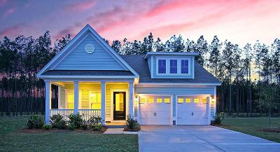 Mount Pleasant SC Single Family Home For Sale: $437,630
