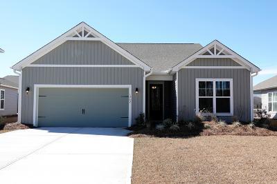 Johns Island Single Family Home For Sale: 1262 Hammrick Lane