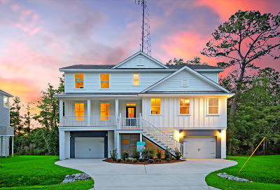 Charleston County Single Family Home Contingent: 3896 James Bay Road