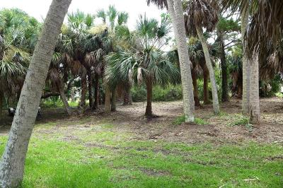 Edisto Beach SC Residential Lots & Land Contingent: $189,500