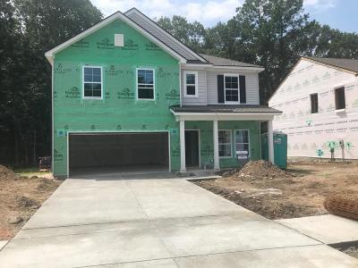 Charleston Single Family Home For Sale: 737 Byrd Garden Road