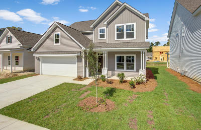 Johns Island Single Family Home Contingent: 1145 Turkey Trot Drive