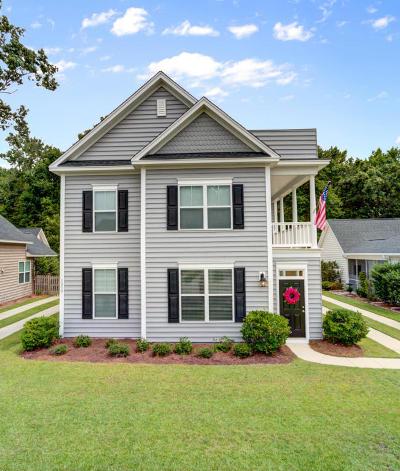 Charleston Single Family Home For Sale: 3030 Scuba Drive
