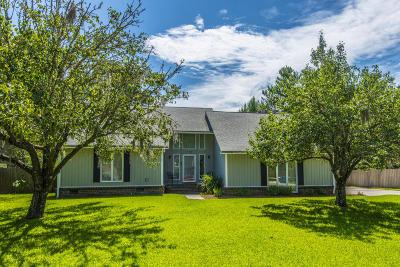 North Charleston Single Family Home For Sale: 125 Palmetto Bluff Drive