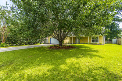 North Charleston Single Family Home For Sale: 8030 Nova Court
