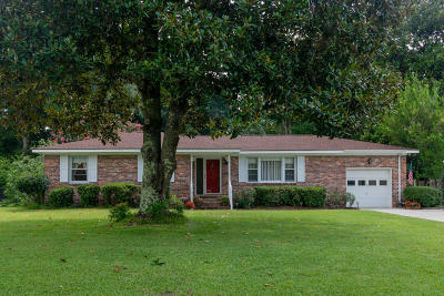 Charleston Single Family Home For Sale: 978 Mikell Drive