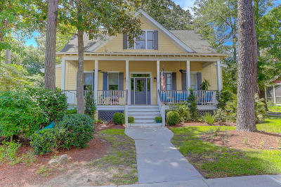 Johns Island Single Family Home For Sale: 5056 Coral Reef Drive