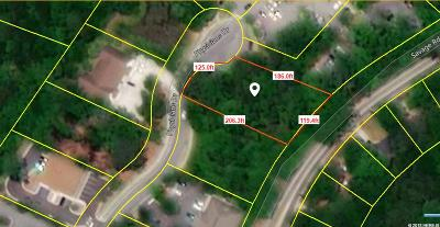 Charleston Residential Lots & Land For Sale: 1013 Physicians Drive
