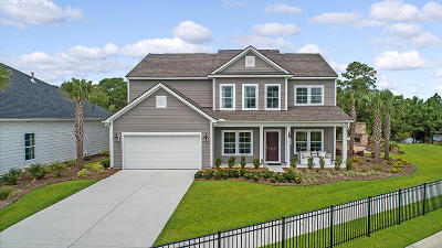 Johns Island Single Family Home For Sale: 3326 Great Egret Drive