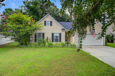 Mount Pleasant Single Family Home For Sale: 589 Antebellum Lane