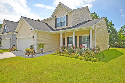 Summerville Single Family Home For Sale: 206 Alpine Rd