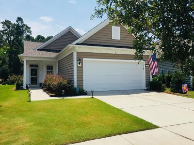 Berkeley County Single Family Home For Sale: 531 Sea Foam Street