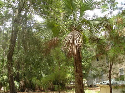 Edisto Island SC Residential Lots & Land For Sale: $55,000