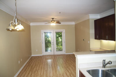 Charleston County Attached For Sale: 1755 Central Park Road #7117