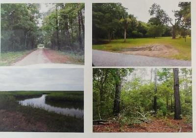 Awendaw Residential Lots & Land Contingent: 955 Gadsdenville Road
