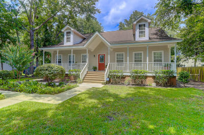Johns Island Single Family Home For Sale: 2001 Elaine Street