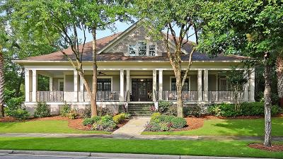 Charleston Single Family Home For Sale: 393 Ralston Creek Street