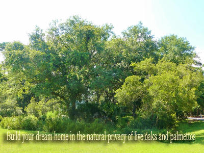 Edisto Island SC Residential Lots & Land For Sale: $80,900