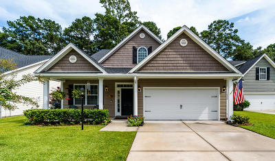 Johns Island Single Family Home For Sale: 3490 Field Planters Road