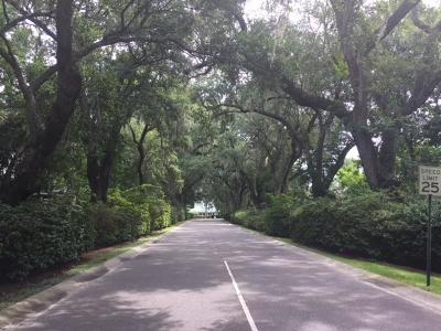 Residential Lots & Land For Sale: Lot 133 Blockade Runner Court