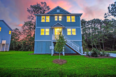 Johns Island Single Family Home For Sale: 3892 James Bay Road