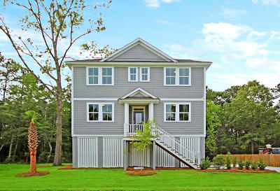 Charleston County Single Family Home For Sale: 3884 James Bay Road