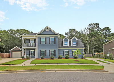 Johns Island Single Family Home For Sale: 2856 Ortega Drive