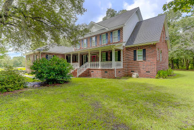 Berkeley County, Charleston County, Colleton County, Dorchester County Single Family Home For Sale: 203 Spotted Owl Lane