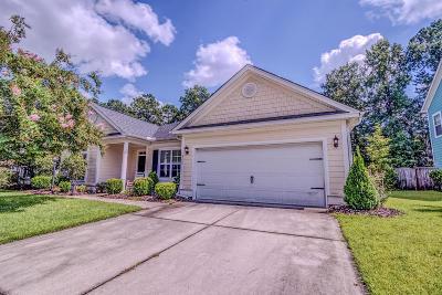 North Charleston Single Family Home For Sale: 8559 Royal Palms Lane