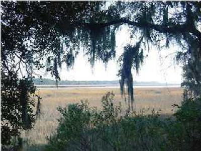 Wadmalaw Island Residential Lots & Land For Sale: 70 Anchor Watch Drive