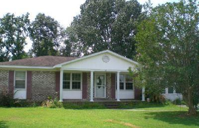Goose Creek Single Family Home For Sale: 211 Frances Street