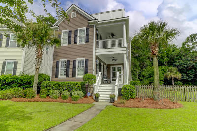 Charleston Single Family Home Contingent: 668 Cloudbreak Court