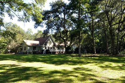 Johns Island Single Family Home For Sale: 6134 Rio Vista Lane