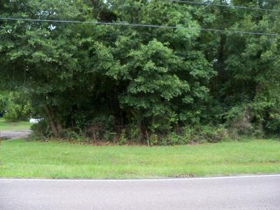 Residential Lots & Land For Sale: Grimball Rd