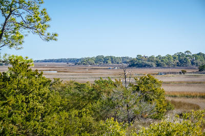 Charleston County Residential Lots & Land For Sale: 19 Governors Drive
