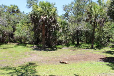 Edisto Island SC Residential Lots & Land For Sale: $69,000