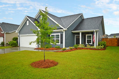 Johns Island Single Family Home For Sale: 3266 Arrow Arum Drive