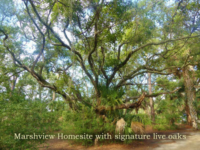 Edisto Island SC Residential Lots & Land For Sale: $65,000